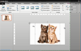 PowerPoint 2013 image effects thumbnail