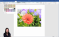 Working With Images - Image Colours thumbnail